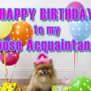 Happy Birthday to My Loose Acquaintance