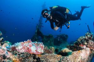 scuba diving experiences
