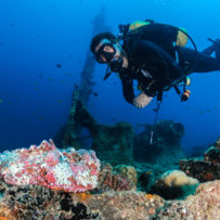5 Reasons to Try Scuba Diving on Your Next Vacation